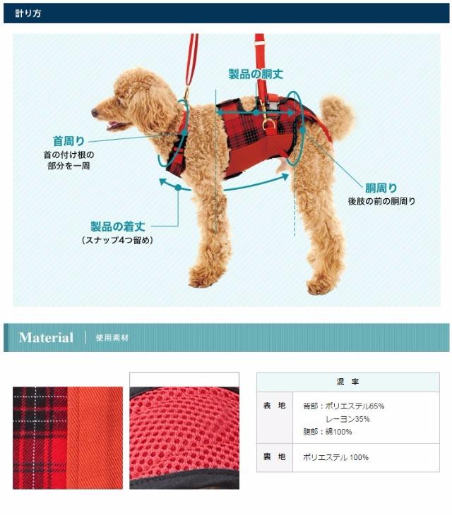 腰痛の犬に歩行補助