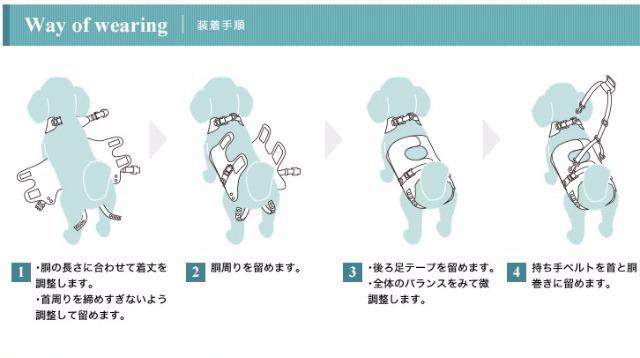 介護ハーネス装着の仕方